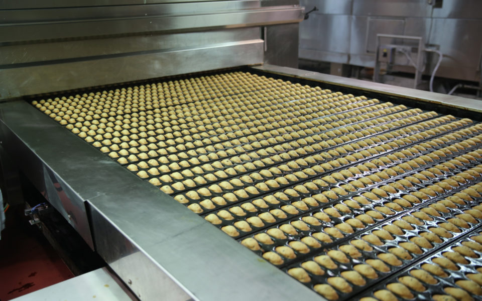 Chaine de production de l'usine Saint Michel à Contres (41)